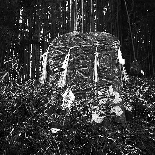fujisawa20141231-02.jpg